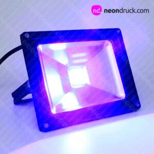 UV-Fluter